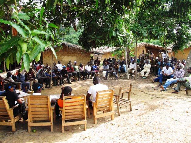 Réunion de la communauté dans le village de Diouya-Dokin r© 2013 Tamasin Ford